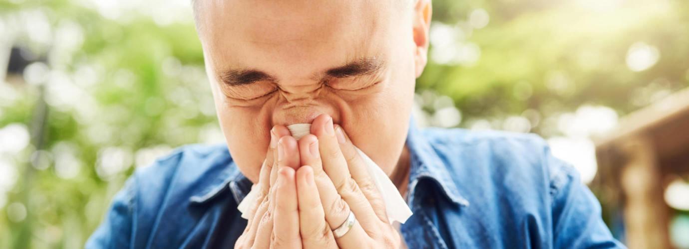 was tun gegen pollen in der wohnung