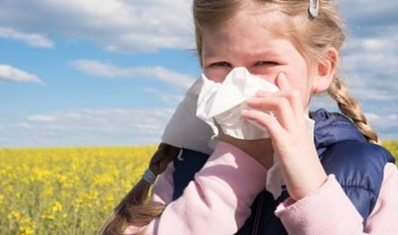 Allergie Crociate