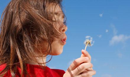 Rinite Allergica Rimedi Della Nonna