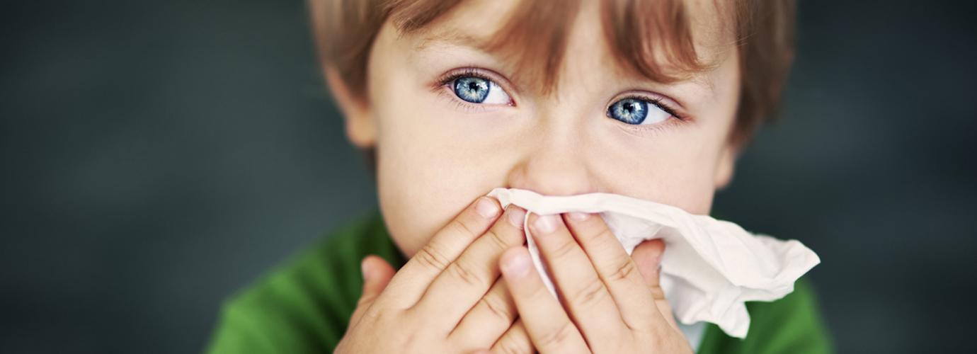 Huisstofmijt Allergie