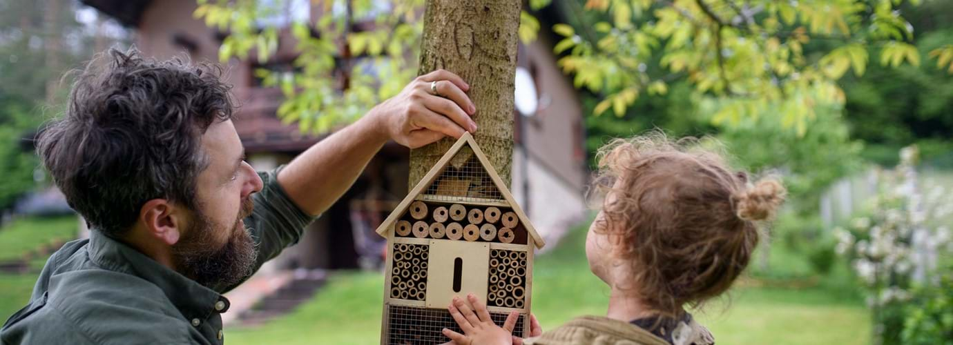 Come realizzare una casetta per insetti fai da te
