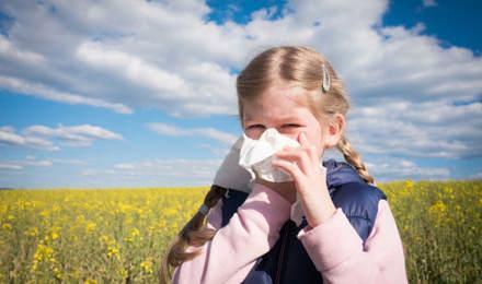 Ein junges Mädchen, das von einer Kreuzallergie betroffen ist, putzt sich in einem Feld die Nase