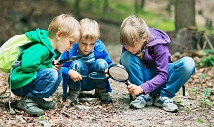 Kinderen met vergrootglazen in een bos
