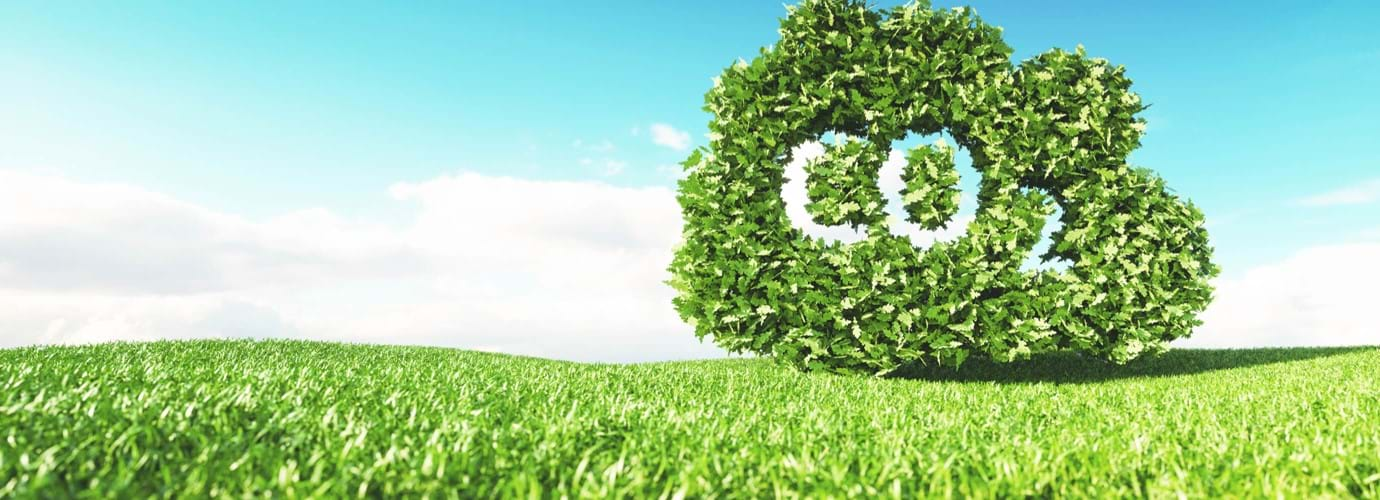 Ridurre al minimo l'impatto ambientale dei nostri prodotti