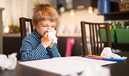 Ein kleiner Junge sitzt an einem Tisch, ist umgeben von Taschentüchern und putzt sich die Nase