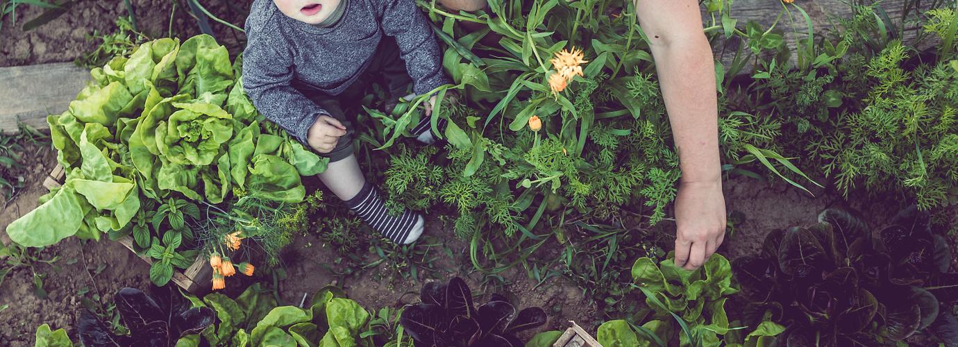 Consigli eco-friendly: come essere sostenibili a casa